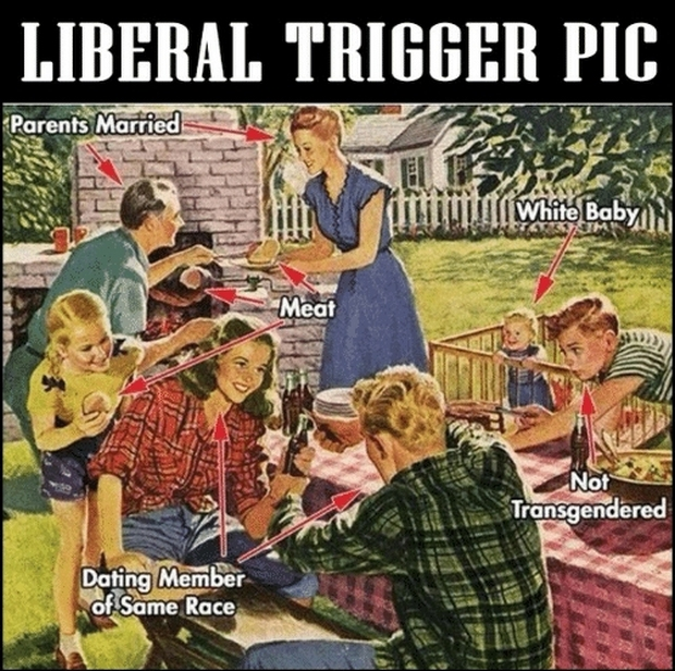 liberal-trigger-picture