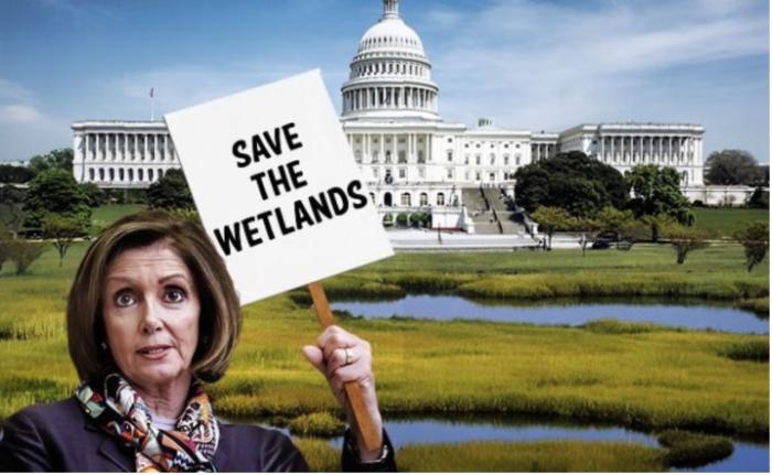 Nancy P. Lousy-Save the Swamp