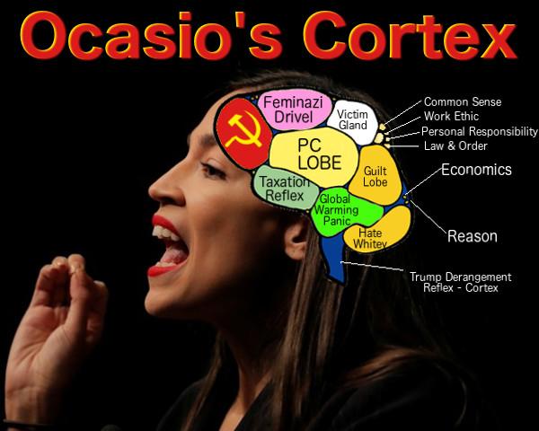 AOC's-cortex