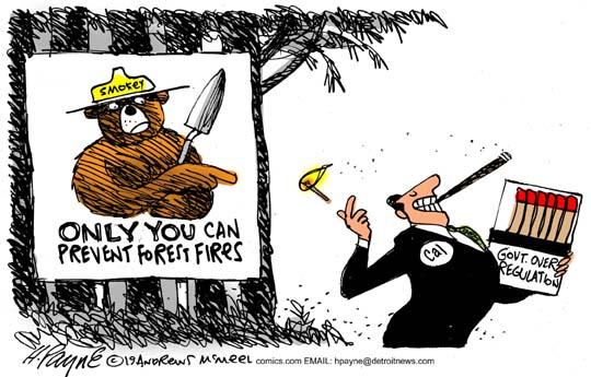 Cal Fires Smokey