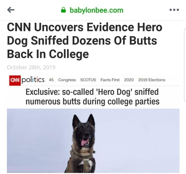 CNN-hero dog sniffed butts