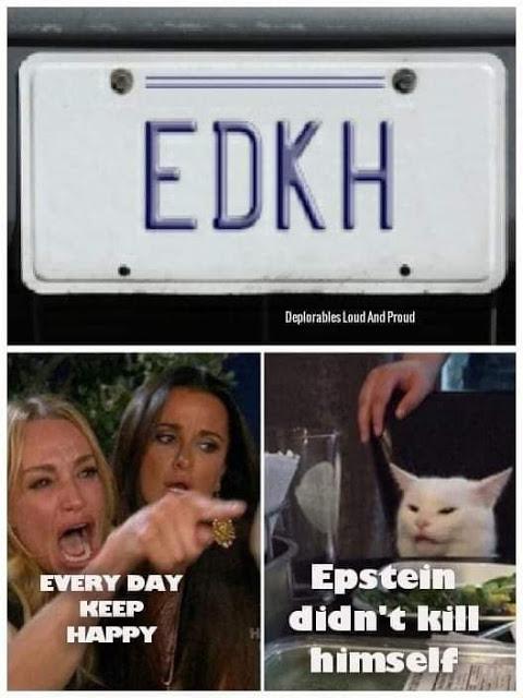 Epstein license plate