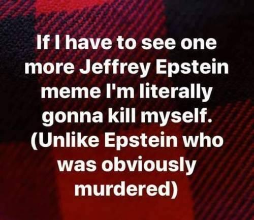 Epstein memes-murder