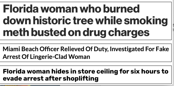 Floriduh-historic tree burned while on meth