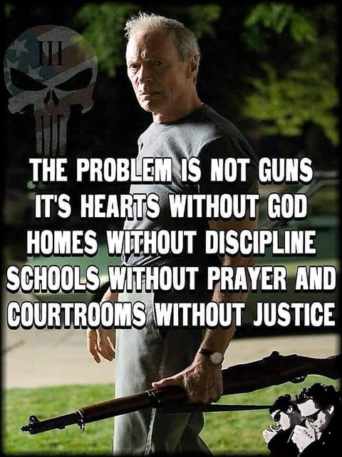 Problem is not guns