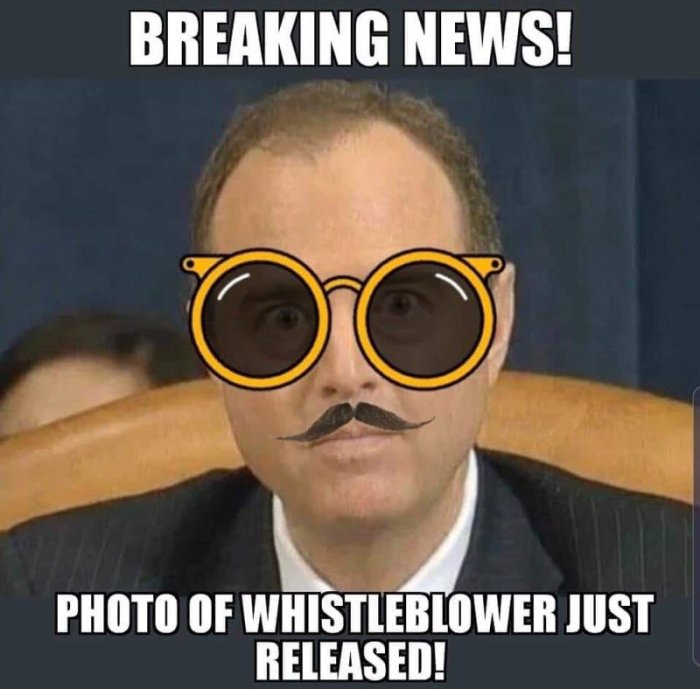 Schiff-for-brains-whistleblower
