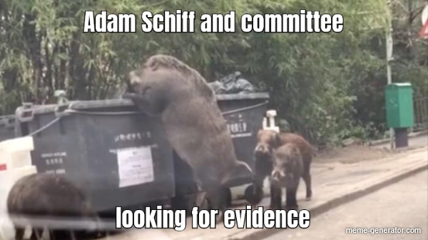 Schiff-for-brains_looking for evidence