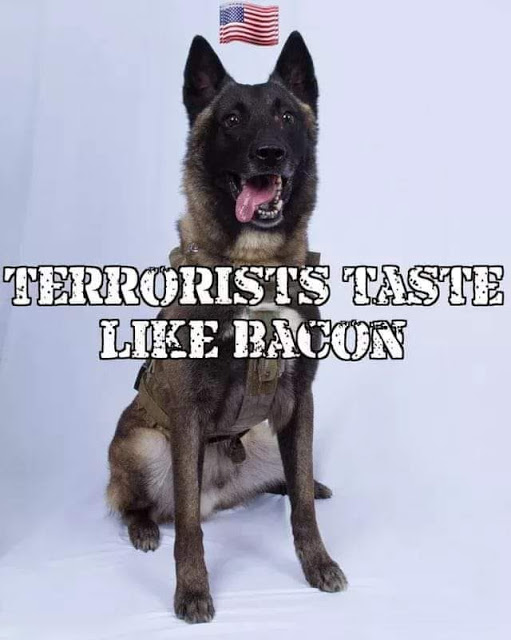 Terrorists taste like bacon