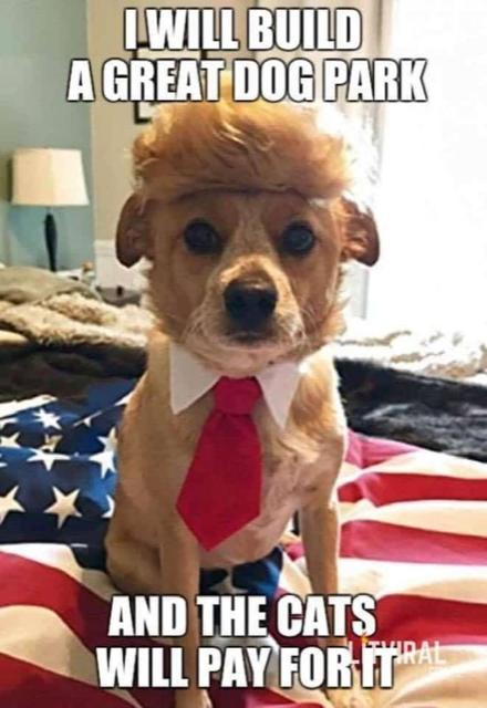 Trump-dog park