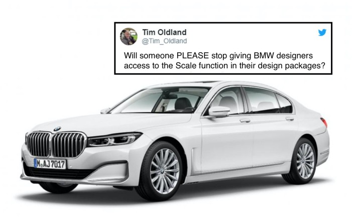 bmw-grille-scale function