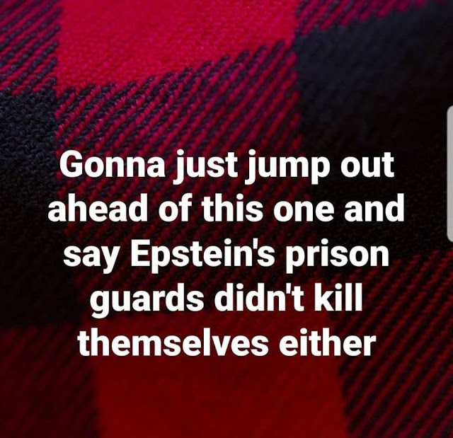Epstein's prison guards