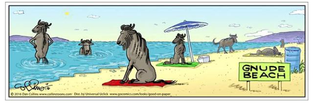 Gnude Beach