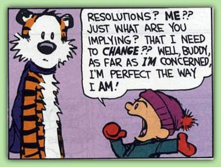 New Year Resolutions-Calvin and Hobbes