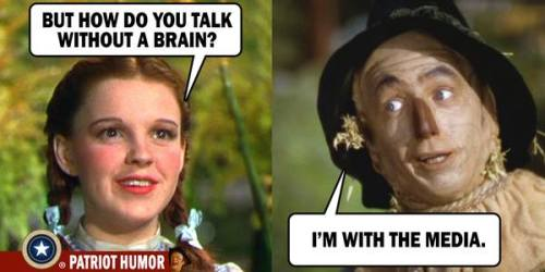 No brain media