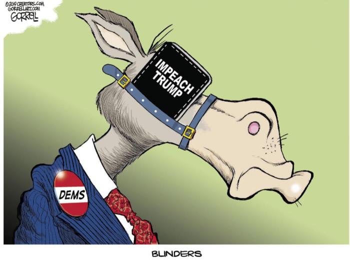 'RATS Impeach Trump blinders