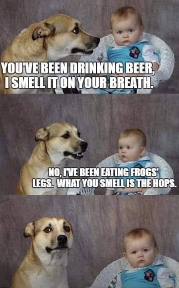 Youve-been-drinking-beer...