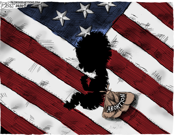 Abortion-moth of our flag