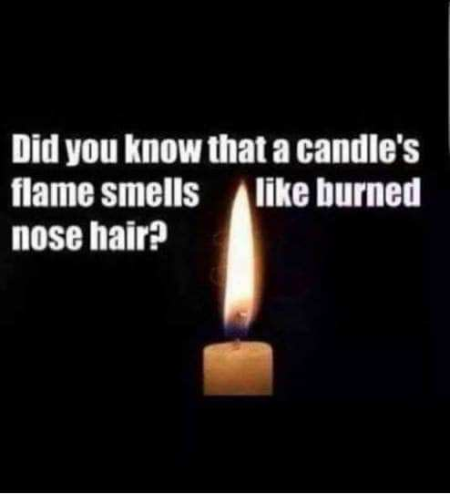 Did-you-know-candle