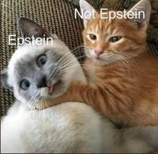 Epstein_Not Epstein
