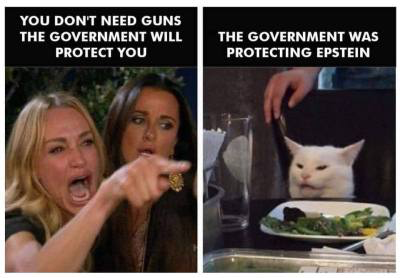 guns-gov't-epstein