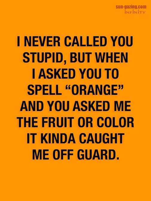 I-never-called-you-stupid-but...2
