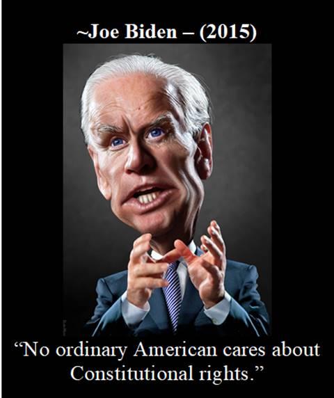 Quid Pro Joe-Constitution