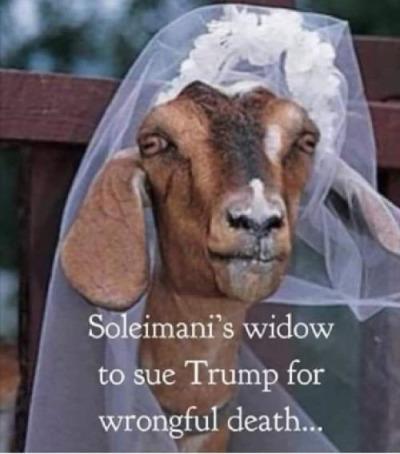 Soleimani's widow