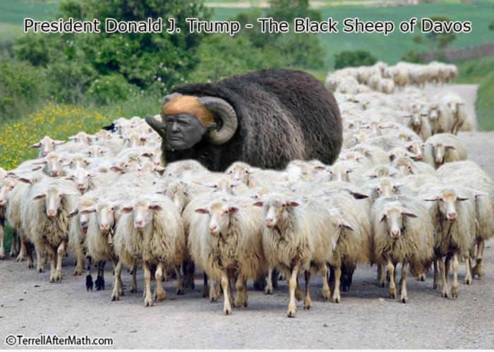 Trump-Black Sheep of Davos