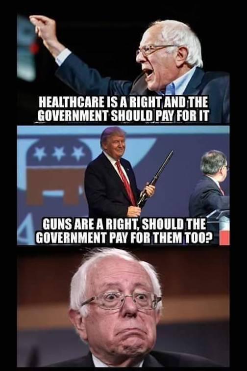Bernie - Healthcare - Guns