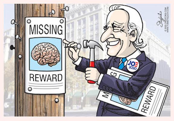 Biden-missing brain