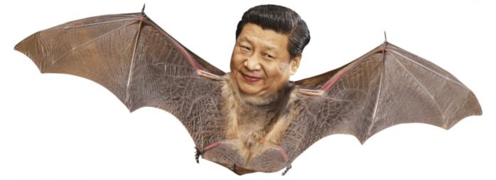 Coronavirus-bat-xi jingpin