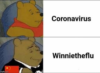 Coronavirus-Winnie the Flu