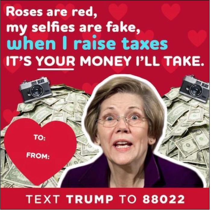 Fauxchahontas-taxes