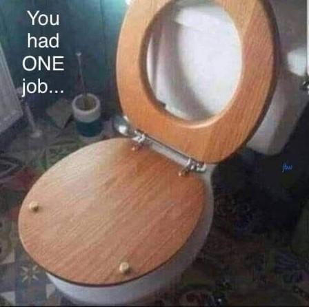 One job to do-toilet seat