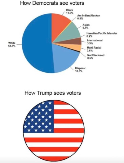 'RATs vs Trump view of voters