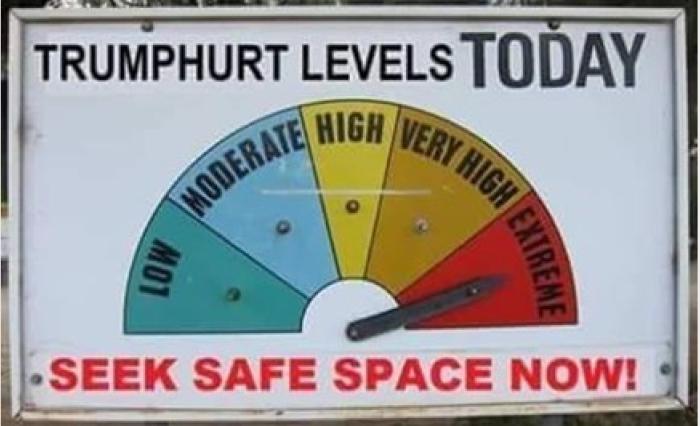 TrumpHurt Meter