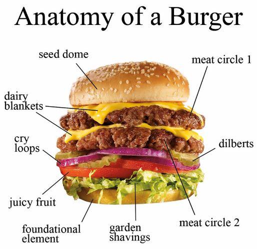 anatomy-of-a-burger
