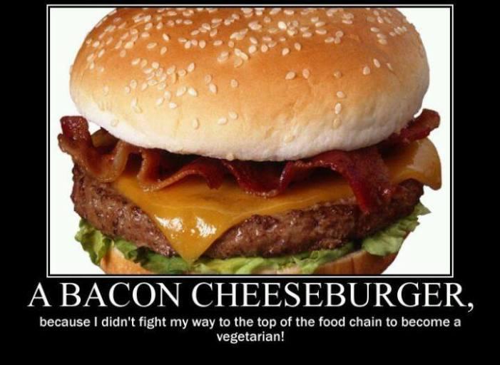 bacon-cheeseburger-food-chain