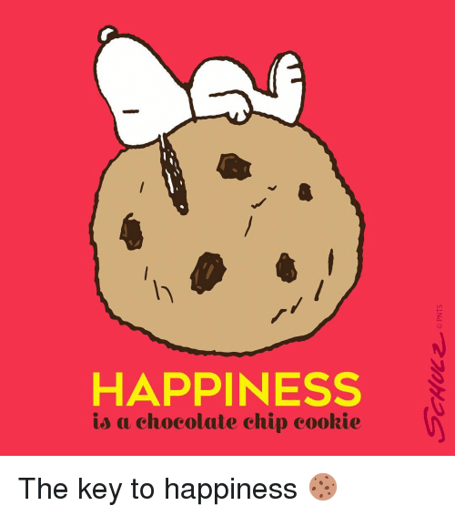 happiness-is-a-chocolate-chip-cookie