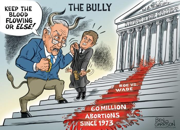 schmuck_bully