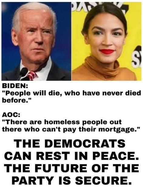 AOC-Biden_'Rat Idiots