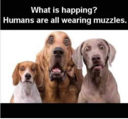 Human muzzles