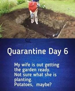 Quarantine Day 6-Wedded Bliss